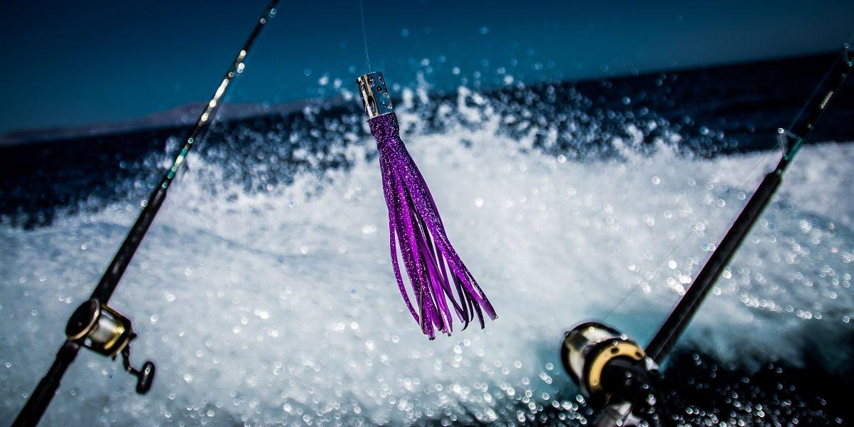 Paquetes De Pesca En Loreto Baja Sur