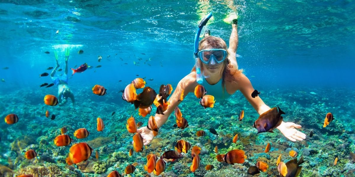 Top Spots For Snorkeling In Loreto Mexico