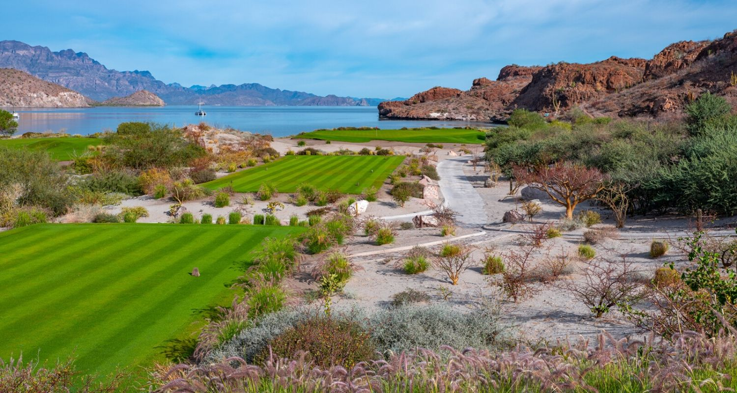 Tpc Danzante Bay Golf Hole